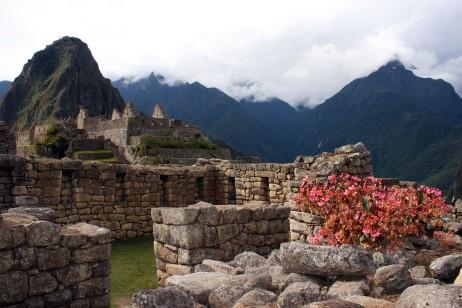 Machu Picchu-Cecelia Marshall3-72